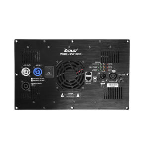 Class D Digital 3 Channel DSP Power Amplifier Module (PW1003) pictures & photos