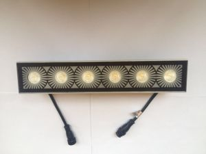 LED Wall Washer Lighting for Exterior pictures & photos