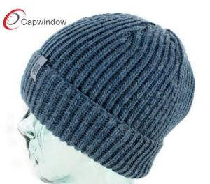 The Fashion Beanie Hat 17093 pictures & photos