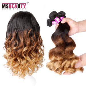 Wholesale Body Wave Human Hair Ombre Colored Malaysian Remy Human Hair pictures & photos
