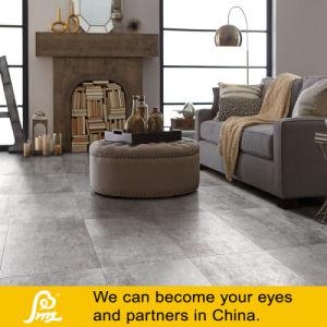 Cement Porcelain Tile Italian Style 600X600mm (Caria Ceniza) pictures & photos