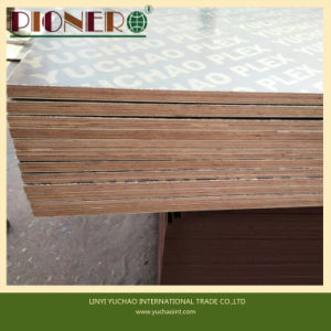 Film Faced Plywood for Australia Market pictures & photos