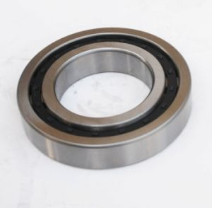 Cylindrical Roller Bearing (NJ220/NU220E) Rolling Bearing pictures & photos