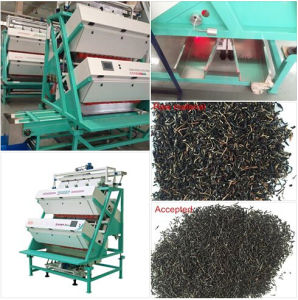 T Series of China Manufacturer Intelligent Tea Color Sorter pictures & photos