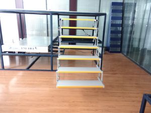 High Quality Es-F-T-7 Electric Folding Step for Special Cars pictures & photos