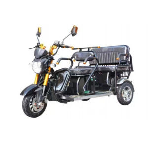 Recreational Outdoor Three Wheel Motorcycle for Disabled
