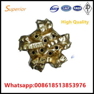 PDC Bit with 7 Blades Low Price High Quality for Water Gas Oil Drilling From China pictures & photos