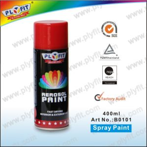 Automotive Paint Manufacturers Wholesale All Purpose Aerosol Spray Paint pictures & photos