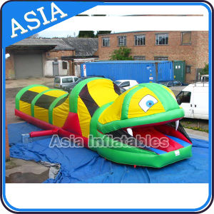 Amusement Inflatable Snake Tunnel for Kids Party pictures & photos