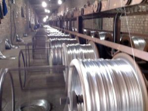 ASTM A475 Galvanized High Carbon Steel Wire pictures & photos
