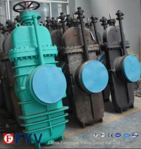 API Natural Gas Flat-Plate Gate Valve pictures & photos