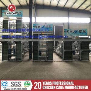 Q235 Bridge Steel Poultry Battery Cages Price in Qatar pictures & photos