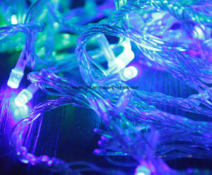 LED Outdoor Garden Holiday Light Star Fairy Lights pictures & photos
