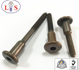 1/4 Flat Head Hexagonal Socket Step Bolts with High Quality pictures & photos