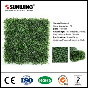 China Supplier PE Plastic Synthetic Green Wall for Hotel Use pictures & photos