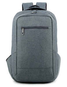 Newest Style Simplicity Laptop Backpack Bag, Computer Shoulder Backpack Bag for School, Ol pictures & photos