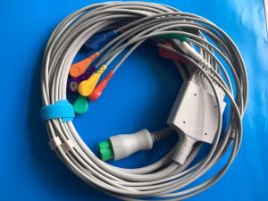 Mindray T8 12pin Aha Snap EKG/ECG Cable pictures & photos