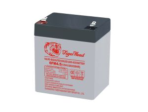 VRLA Battery for Rechargeable Fan pictures & photos