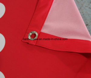 Full Color Polyester Fabric Banner (SS-SF101) pictures & photos