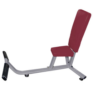 Fitness/Hammer Strength Equipment/75-Degree Bench/Exercise Machine pictures & photos