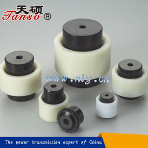 Nylon Type Gear Sleeve Coupling for Pumps pictures & photos