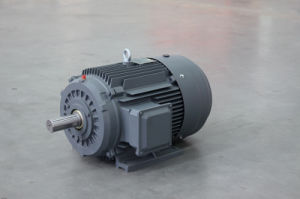 Sm Series Industrial Machine Machinery Three-Phase Induction Motor pictures & photos