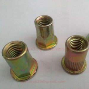 Wholesales Stainless Steel Rivet Nut pictures & photos