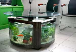 End Table Fish Tank/Rounded Tea Table Aquarium/Glass Tea Table (CJ
