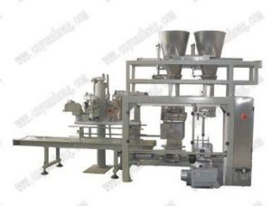 Automatic Coal Bag Measuring and Filling Machine Charcoal Weighing and Packing Machine pictures & photos