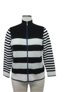 Ladies Turtle Neck Stripe Knitted Sweater for Spring′15