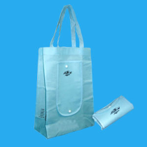 Non Woven Bag (HR-NWB114) pictures & photos