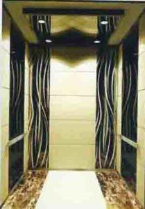 Machine Roomless Passenger Elevator (TKJ800/1.0-JXW)