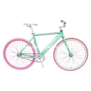 Fixed Bike (WT-2711)