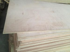 Plywood with BS1088 Ceitification pictures & photos