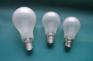 40W Frosted Bulb (general shape)