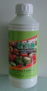 Manure Additive Fertilizer