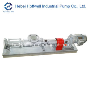 CE Approved G40-2 Mono Screw Pump pictures & photos