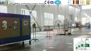 Water Filling Machine, Pet Bottle Filling Machine, Water Filler, Monoblock pictures & photos