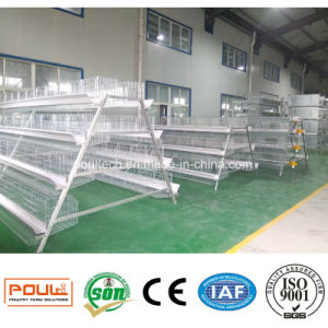 Poultry Equipment High Capacity Battery Chicken Cage pictures & photos