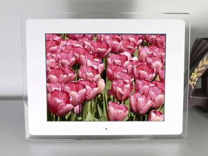 12.1 Inch Digital Photo Frame (AL1201)