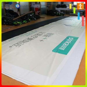 Custom Size Frontlit Vinyl PVC Banner Printing pictures & photos