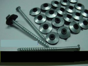 Roof Screw With Neoprene Washer & China Roof Screw With Neoprene Washer - China Roof Screw Nail ... memphite.com