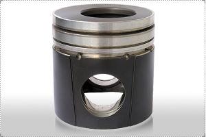 Top Anodic Oxidation Rimming Graphite Piston pictures & photos