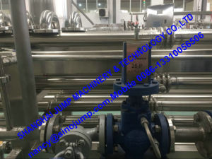 Factory Direct Sale Banana Puree Processing Line/Production Line pictures & photos