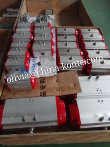 Bt Pneumatic Actuator Series- Different Seal Material (NBR/VITON) pictures & photos