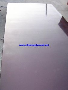 18mm Brown Film Marine Plywood