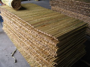Bamboo-Fence-Bamboo-Fencing.jpg