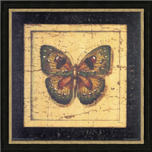 Hand-Painted Oil Painting with PS Frame for Butterfly Image