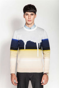 Winter Round Neck Jacquard Knit Knitwear for Men pictures & photos