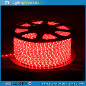 Waterproof Outdoor Use IP65 Flexible 220V and 12V RGB LED Strip Light pictures & photos
